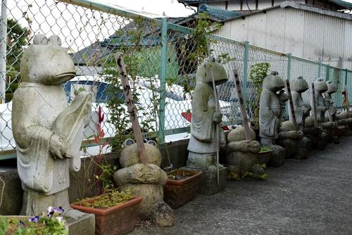 271105 かえる寺5