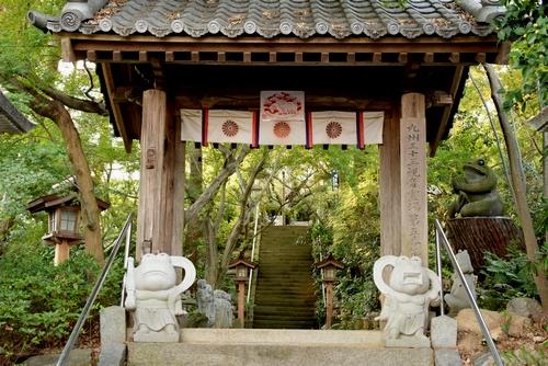 271105 かえる寺10