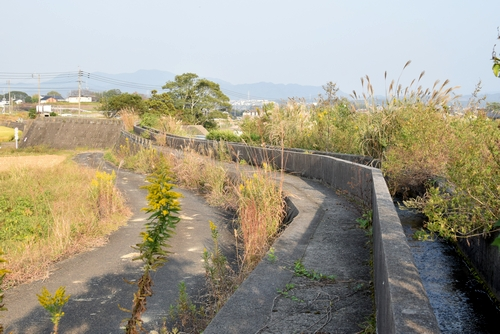 271022 杉ノ木水路6