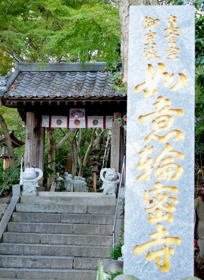 271119 かえる寺1