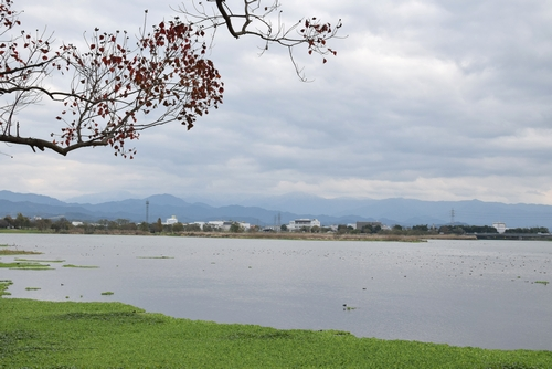 271127 江津湖1