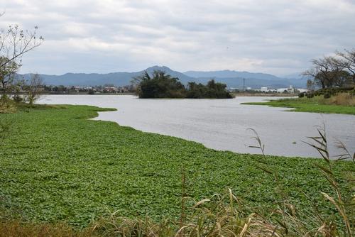 271127 江津湖8