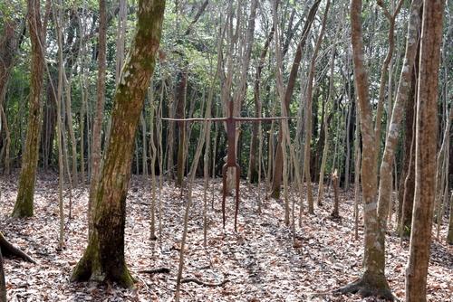 271226 霧島アートの森15