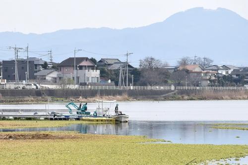 280122 江津湖15