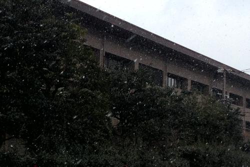280124 雪3
