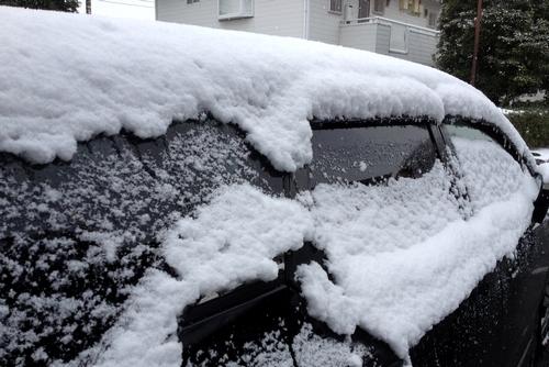 280124 雪6
