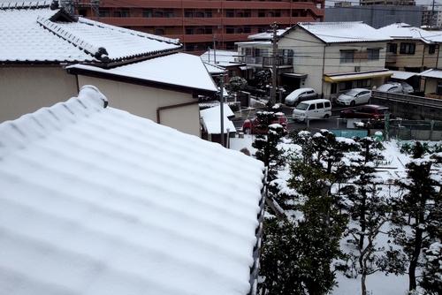 280124 雪8
