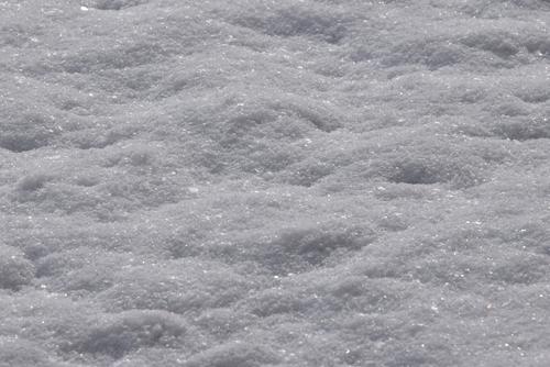 280125 雪1
