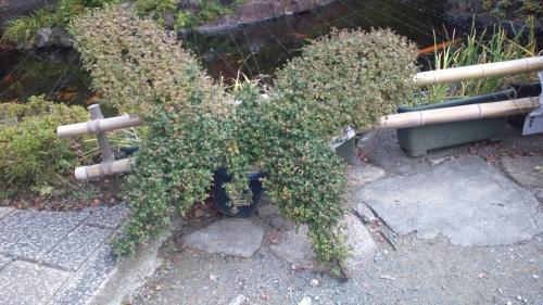 参禪先の庭03