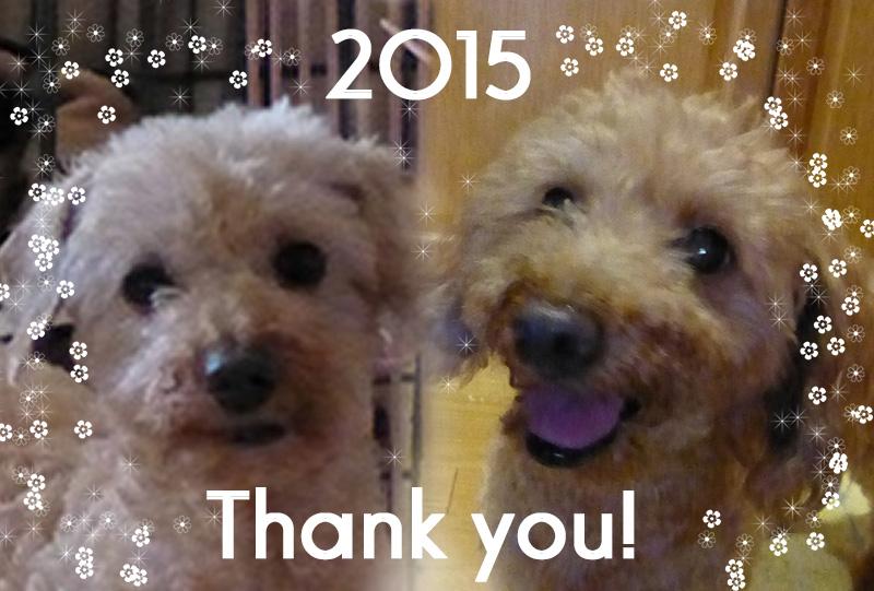 2015ご挨拶