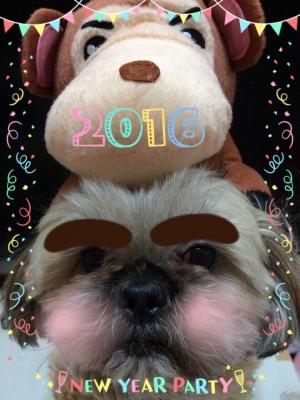 チッ君新年2016