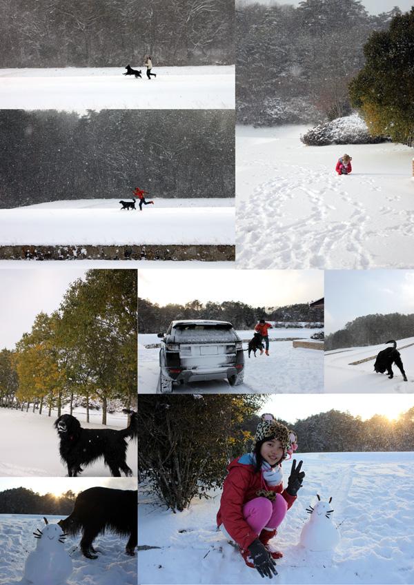 2016サンワ雪