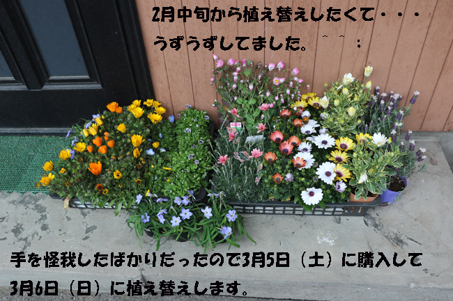 006-87654-9875-98766.jpg