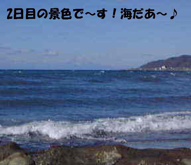 3Jng8y1230.jpg