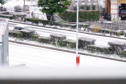 雪に覆われた、福岡市内の午後12時半