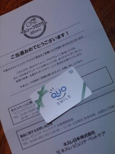 クオカード2000円分 ピュリナワン 懸賞
