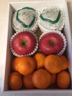 2015果物