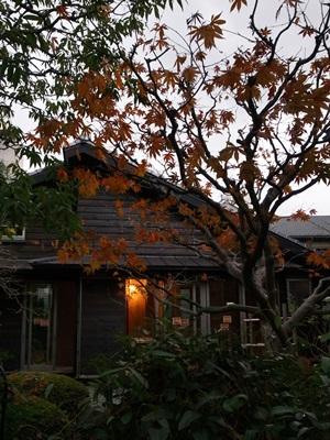 Ino紅葉の夕景1512