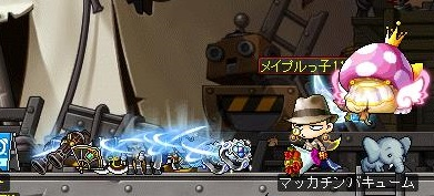 Maple13865a.jpg