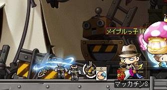 Maple13911a.jpg