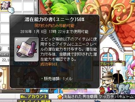 Maple13948a.jpg
