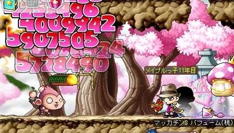 Maple13951a.jpg
