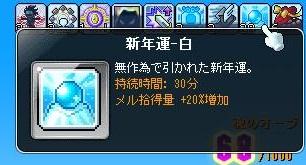 Maple13957a.jpg