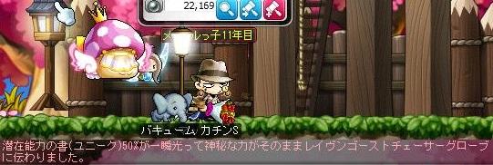 Maple13970a.jpg