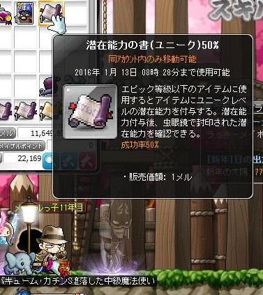 Maple13971a.jpg