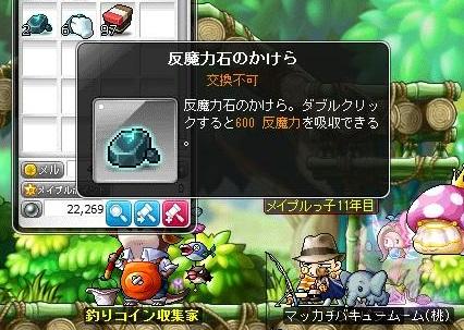 Maple13981a.jpg