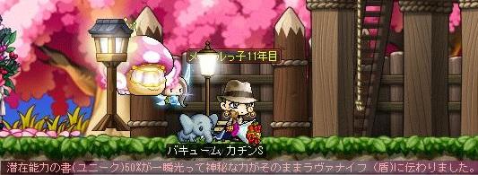 Maple14001a.jpg