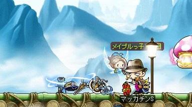Maple14020a.jpg