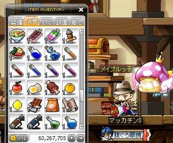 Maple14022a.jpg