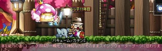 Maple14038a.jpg