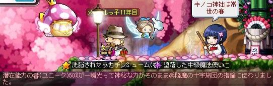 Maple14080a.jpg