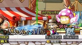 Maple14130a.jpg