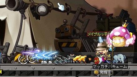 Maple14135a.jpg
