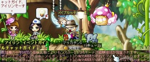 Maple14136a.jpg