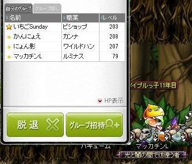 Maple14162a.jpg