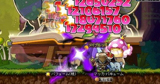 Maple14238a.jpg