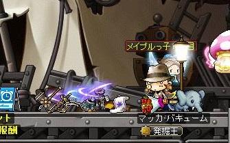 Maple14240a.jpg