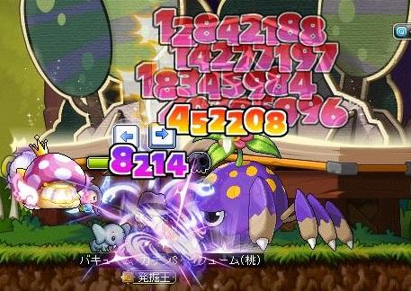 Maple14242a.jpg