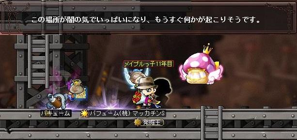 Maple14321a.jpg