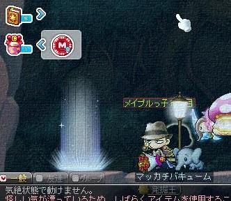 Maple14346a.jpg