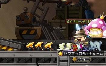 Maple14383a.jpg