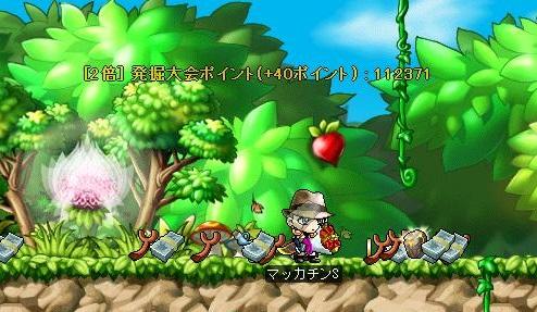 Maple8408b.jpg