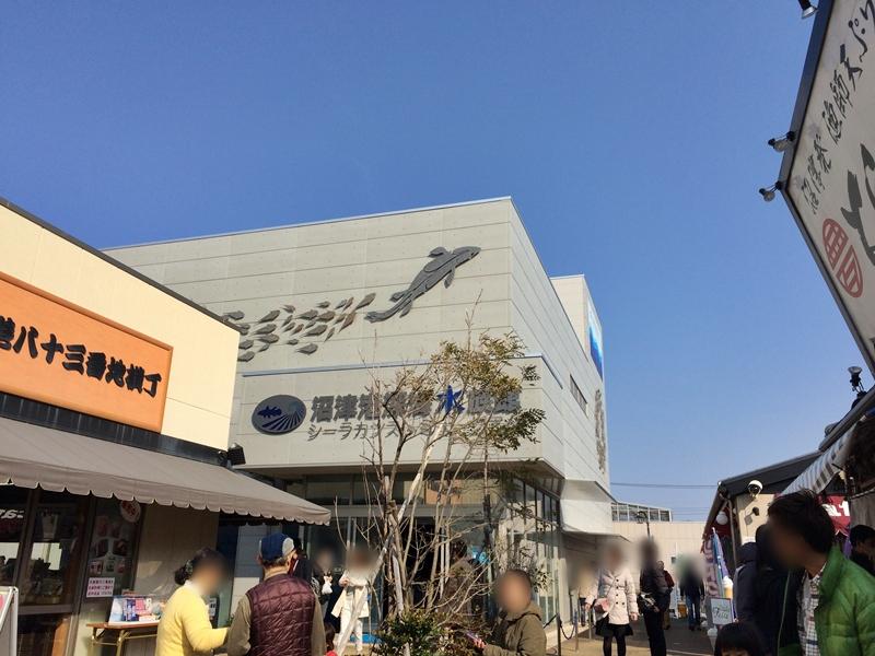 shinkai-20160227-01.jpg