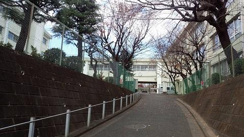 160110 神奈川県T小学校1