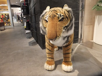 Onitsuka-Tiger6.jpg