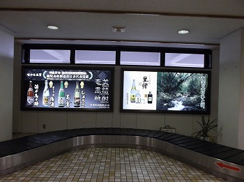 amamiooshima295.jpg